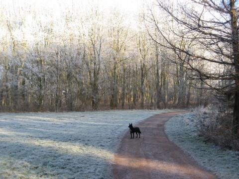 Haus Yoga Vidya Bad Meinberg Parklandschaft im Winter