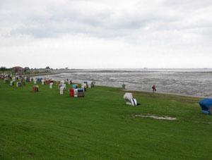 Yoga Vidya und Wiesen Strand