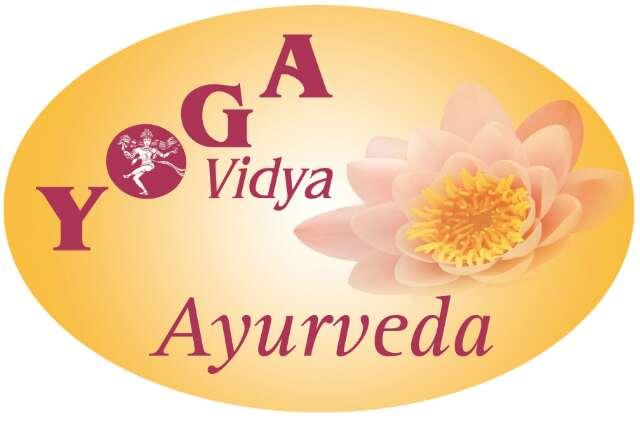 yv-ay_logo
