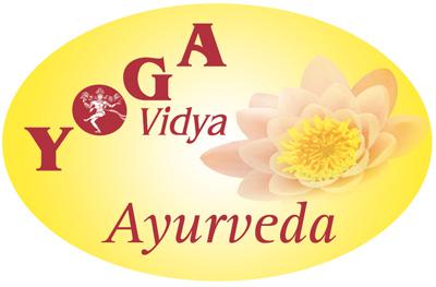YV-AY-Logo