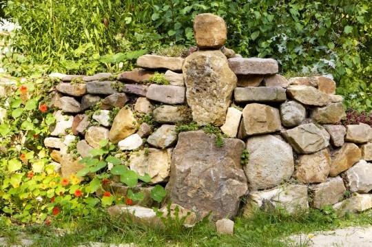 Mauer mit Brunnenkresse