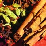 Gewürze -ayurveda-essen-nahrung