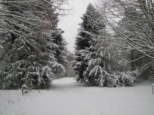 03 Winter 130