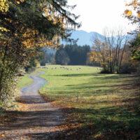 1_Herbstwanderung
