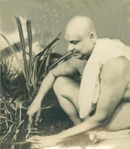 swami sivan14