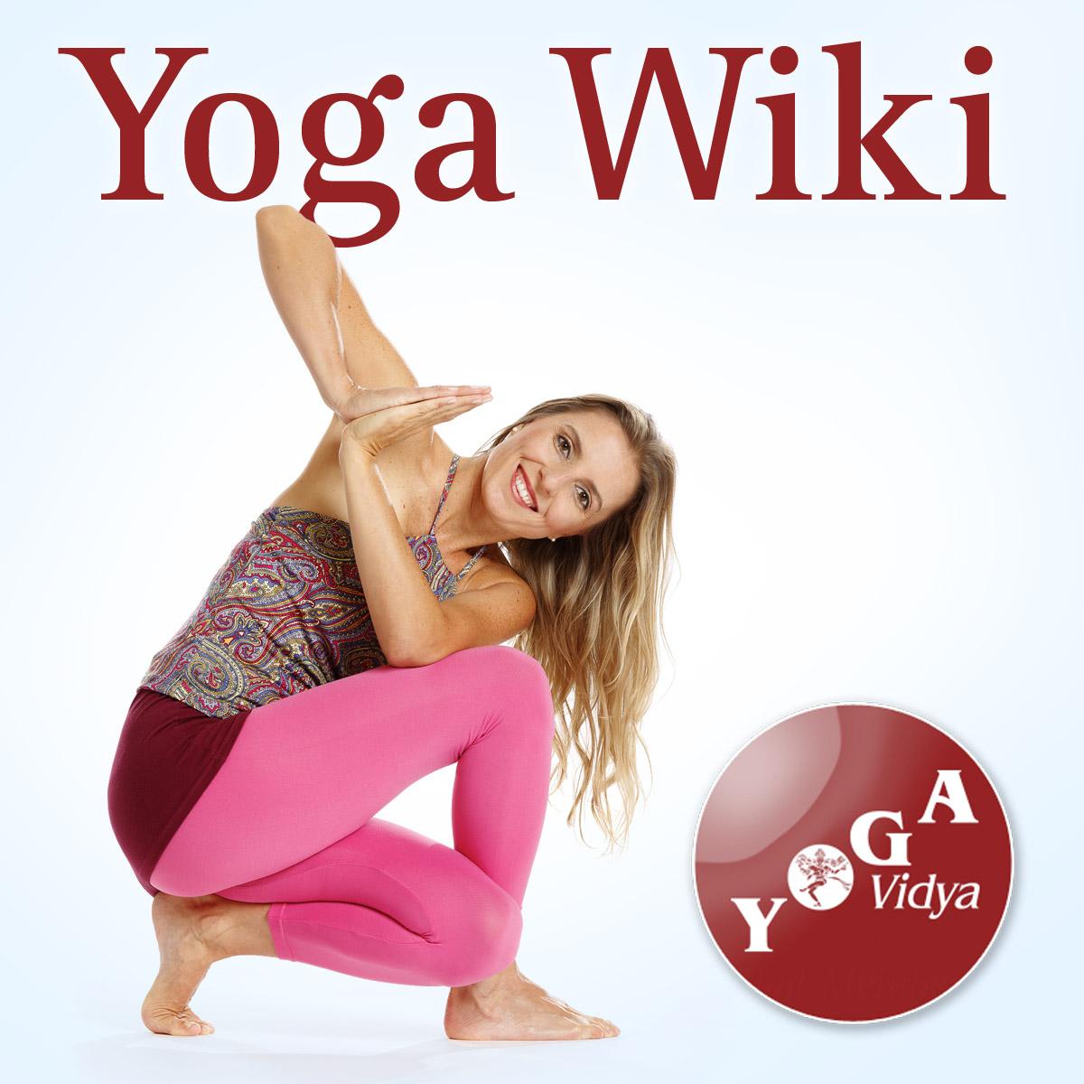 Yoga Wiki über endokrine Drüsen - Yoga Vidya Blog - Yoga, Meditation ...