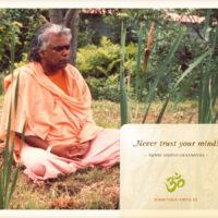 zitat-swami-vishnu-devananda_0001_1200x900px