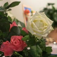 Rosen im Sivanandasaal