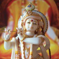 Shivalaya-Krishna-medium