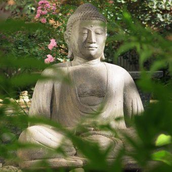 Buddha im Schweigegarten