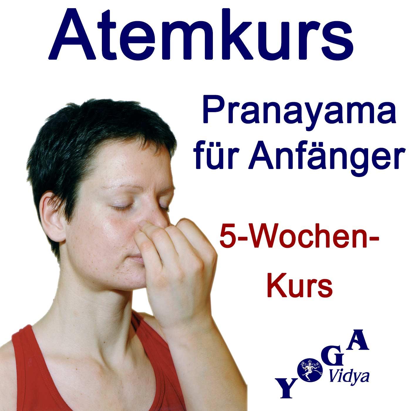 Atemkurs für Anfänger - in 5 Wochen Yoga Pranayama lernen