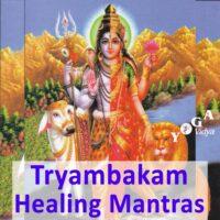 Om Tryambakam Yajamahe Healing Mantra