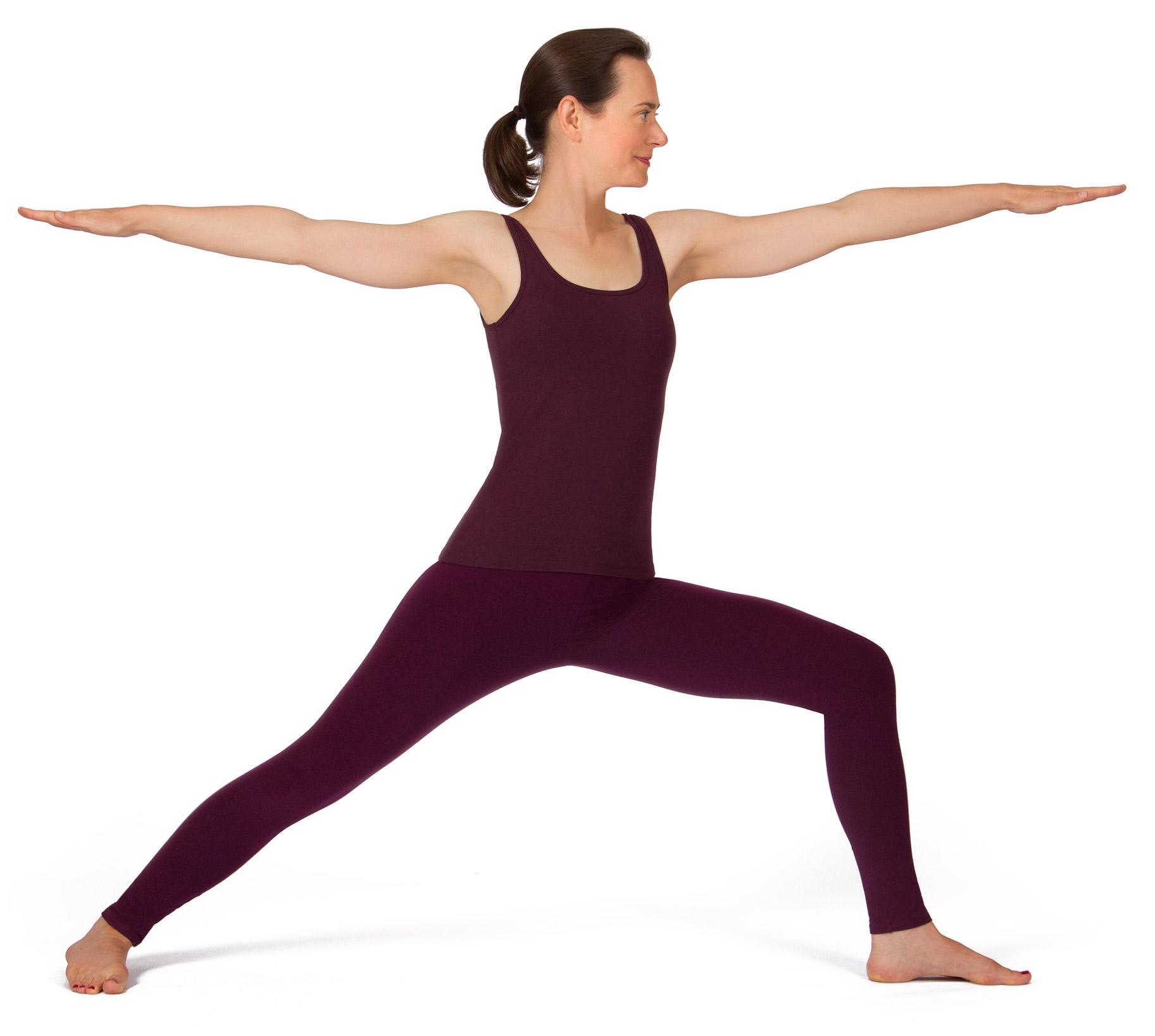 Die Geistige Symbolik Der Asanas Raja Yoga Auf Der Yogamatte Teil 1 Yoga Vidya Blog Yoga Meditation Und Ayurveda