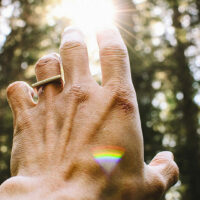 """Link zum Blogbeitrag """"Ganzheitlicher Yoga und Natur"""""""