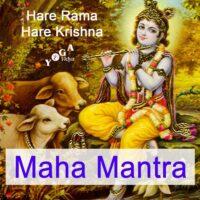Cover Art des Mahamantra Podcast