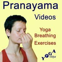 Cover Art des Pranayama Breathing Exercises Podcast