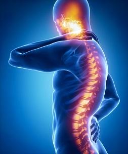Mit den Rückenproblemen kann die Yogatherapie gut arbeiten.