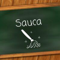 Sauca ist die Reinheit und beschreibt, dass wir geistig wie körperlich keine Anhaftungen erleben